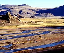 chinas drynig wetlands