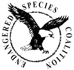 Rewriting the Endangered Species Act will hurt rare