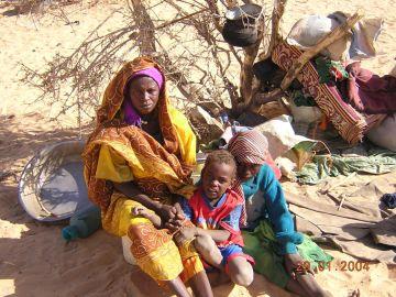 environmental refugees increasing