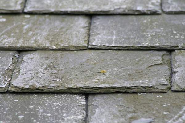 5 Great Options For Creating An Eco Friendly Roof Green