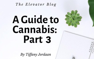 A Guide to Cannabis: Part 3