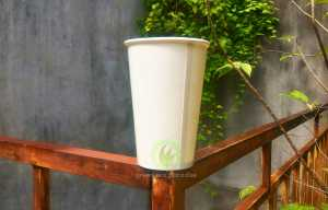 paper cup Malaysia