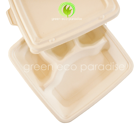 Biodegradable Bento Box