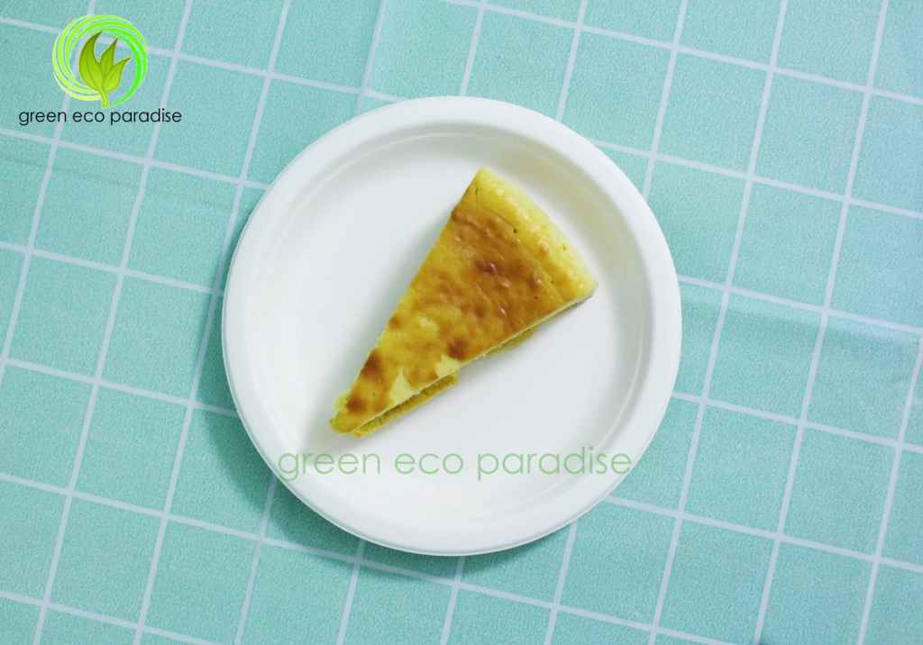 Biodegradable plates for events