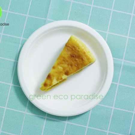 Biodegradable Plate (White)