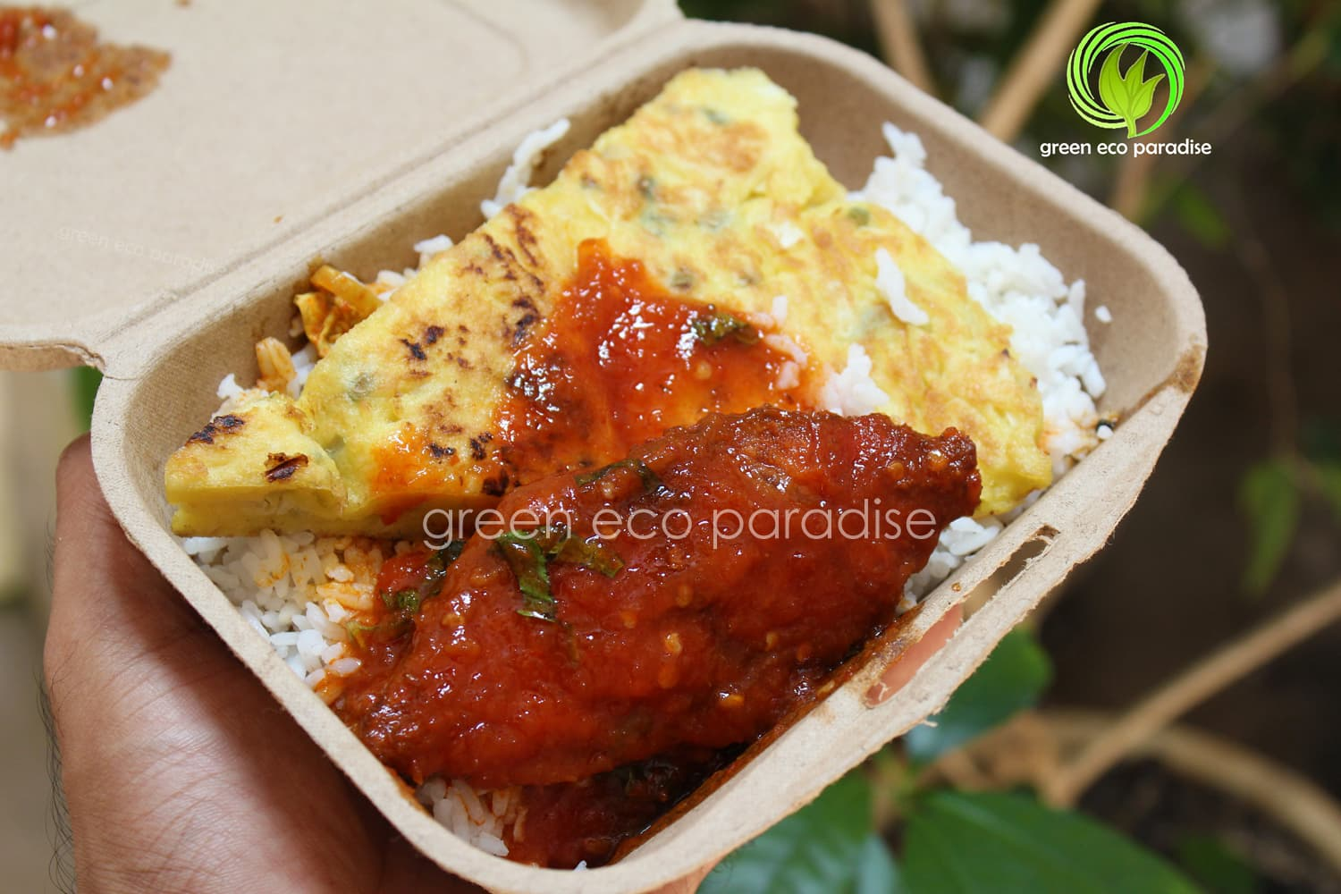 Takeaway with biodegradable food packaging box