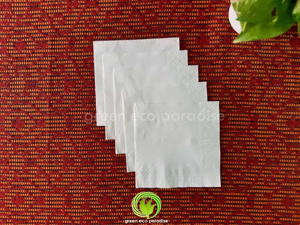 Paper napkin Malaysia