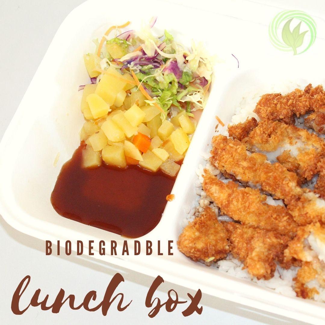 Biodegradable Lunch Box Malaysia