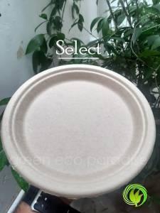 Biodegradable plate Malaysia