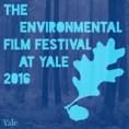 yale festival
