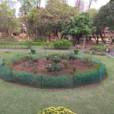 Palace left side Garden View