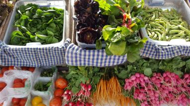 Fresh local produce at the Linton Farmers' Market. The Market Bucks program was supported by Community Support Grant funding.