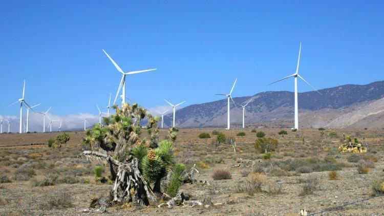 Tule Wind Project (Photo from Avangrid Renewables)