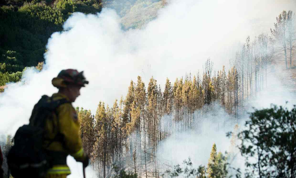 California wildfire made worse by drought (Photograph: Noah Berger/AP)