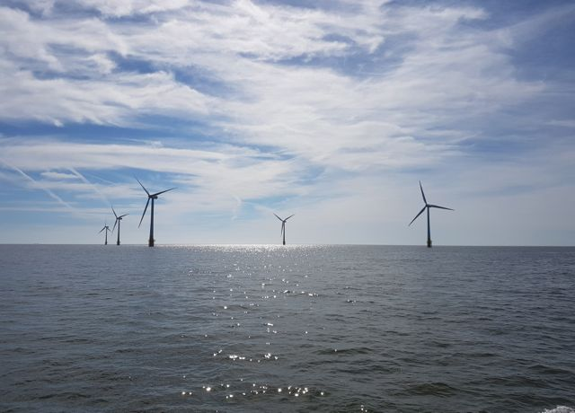 Offshore wind farm (reNews image)