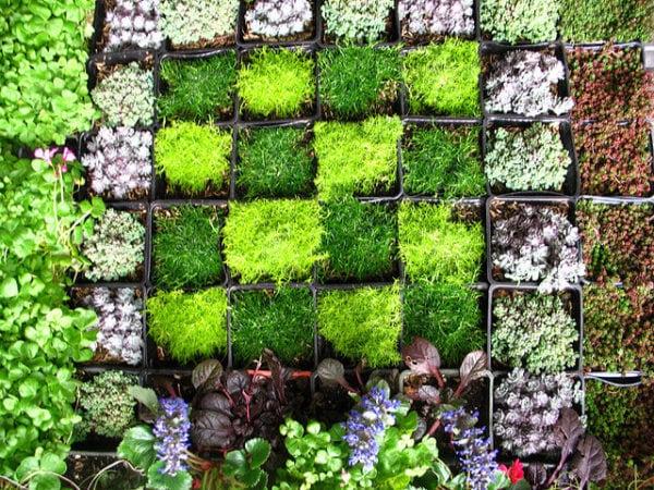 Wall Garden Ideas Images – Bybperrazi Com
