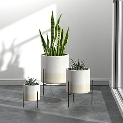 EcoQube Frame Sprouting Kit Apartment Living 8