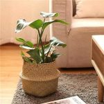 Foldable Seagrass Belly Basket Apartment Living