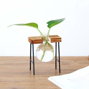 Small Glass Bowl Planter With Stand Apartment Living [tag]