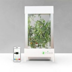 Niwa Smartphone Controlled Growing System Apartment Living [tag]