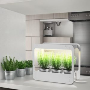 GrowLED Indoor Garden Apartment Living [tag]