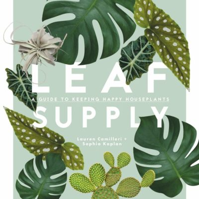 Leaf Supply: A guide to keeping happy house plants Apartment Living laurencamilleri