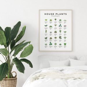 Indoor House Plant Wall Print Apartment Living art