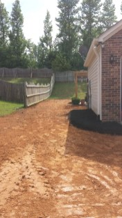 Anderson Yard Makeover (36)