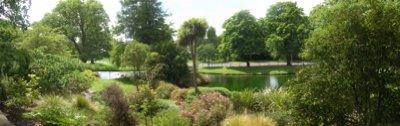 Stmartins-Beckenhampark