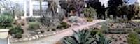 Botanic1.jpg