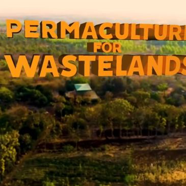 The biggest permaculture project on Earth?