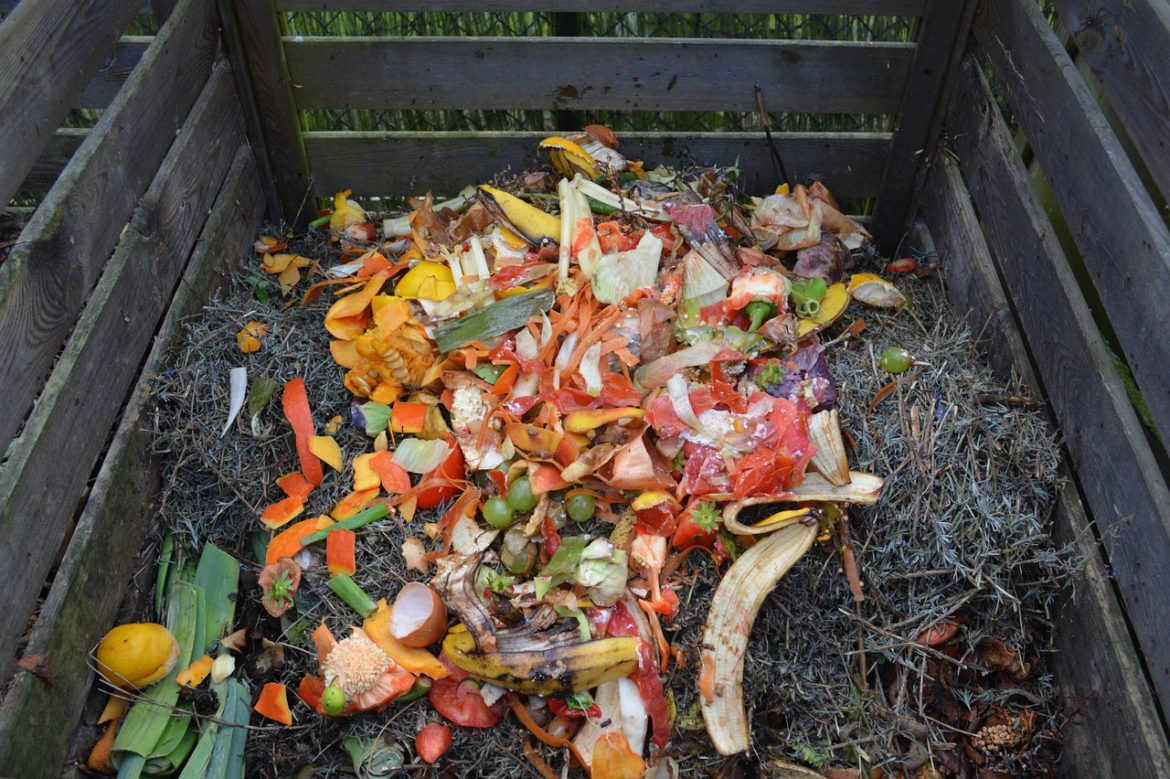 Compost pile with fruits and vegetable on top
