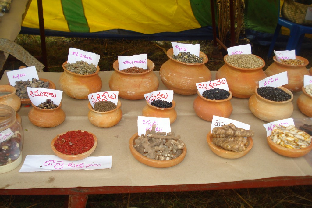 Traditional seed varieties in India
