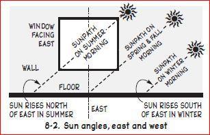 sun and windows