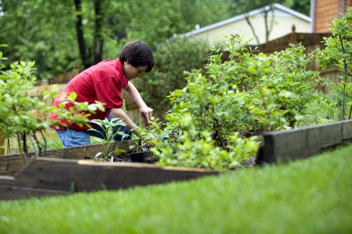 Why Are Young People Turning To Gardening