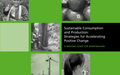 Sustainable Consumption and Production:  Strategies for Accelerating Change