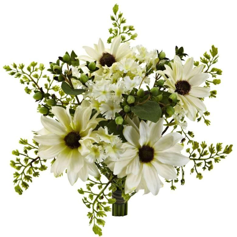 Cream daisy flower