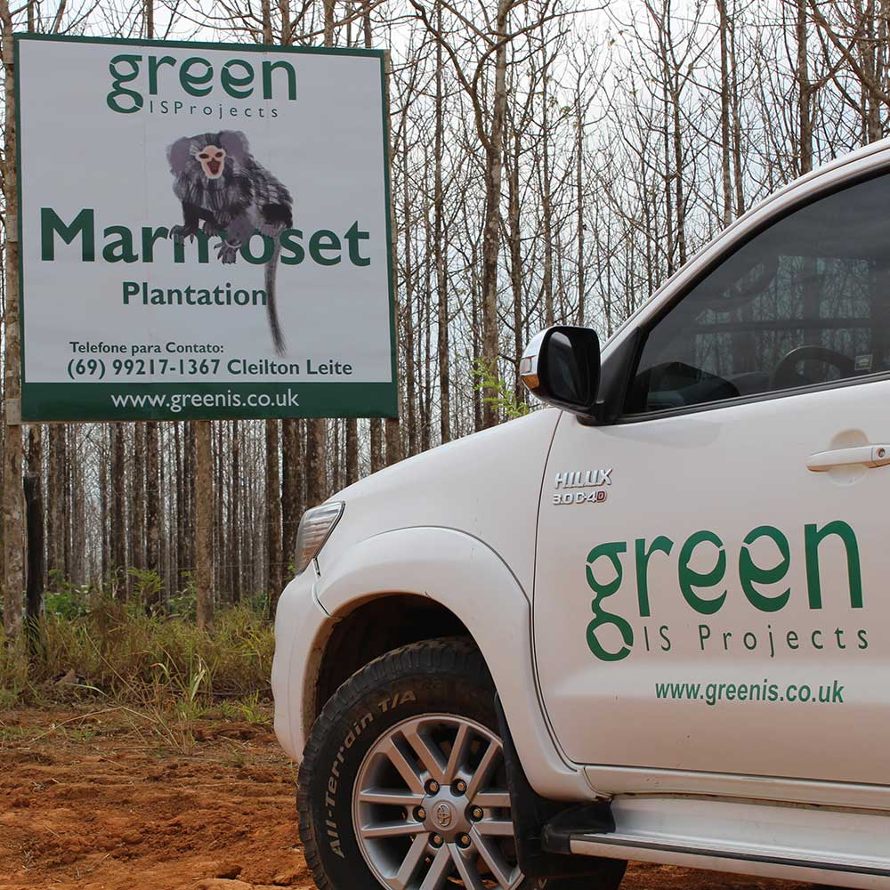 Pictures of our Marmoset Plantation