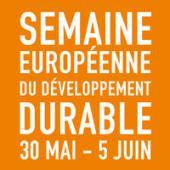 SEDD 2017 - logo - orange