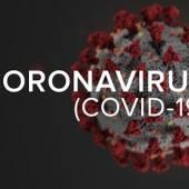 Coronavirus 19 Sars 2