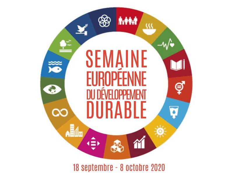 SEDD 2021 - logo