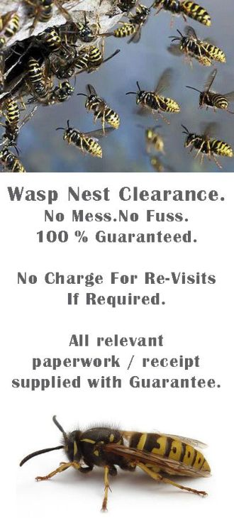 2020 Guaranteed Removal of Wasps in the Roof , Wolverhampton Wasps Nest Removal , Wasps removal in wolverhampton , Wasps Nest Removal Wolverhampton , wasp control