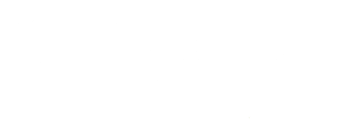 Merlin Green Magic Homes