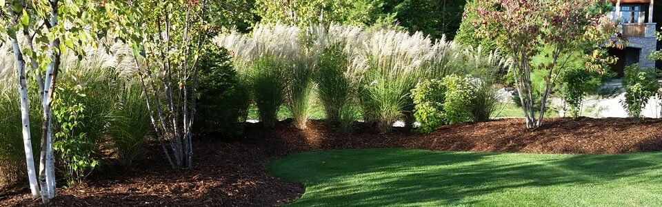 Learn about the benefits of mulch