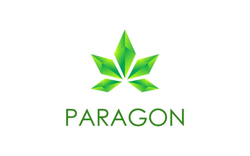 img_paragon.jpg?fit=850%2C531&ssl=1
