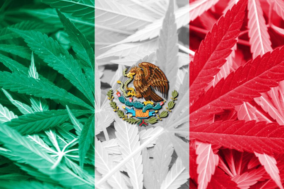 Mexico.jpg?fit=960%2C640&ssl=1