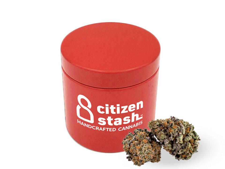 citizen.jpg?fit=960%2C720&ssl=1