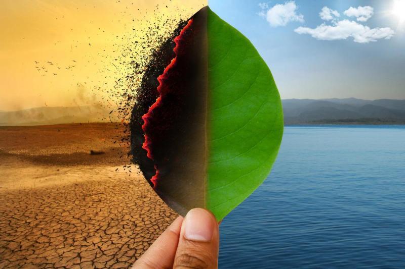Crise ambiental afetará também a produção de café, chocolate e cerveja -  GreenMe.com.br