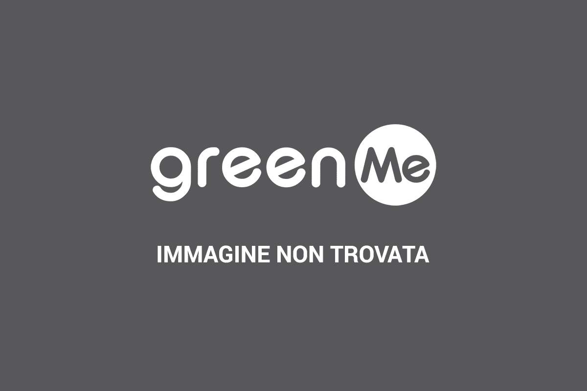 https://i0.wp.com/www.greenme.it/images/bambini_fotovoltaico.jpg