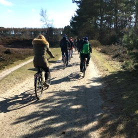Bergwaldprojekt Amrum - Cycling in the sun  | GreenMe Berlin on the road
